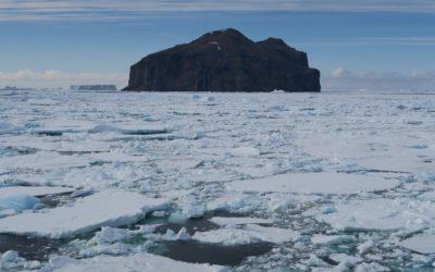 Antarktis – Falklandinseln